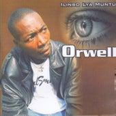 Play & Download Ilinso Lya Muntu by Orwell | Napster