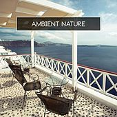 Play & Download Ambient Nature by Various Artists | Napster