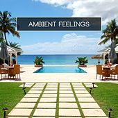 Play & Download Ambient Feelings by Various Artists | Napster
