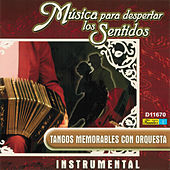 Play & Download Música para Despertar los Sentidos - Tangos Memorables Con Orquesta by Various Artists | Napster