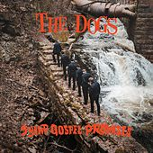 Play & Download Swamp Gospel Promises by The Dogs | Napster