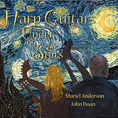 Harp Guitar Under the Stars by John Doan