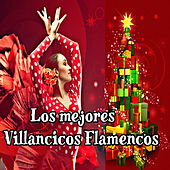 Play & Download Los Mejores Villancicos Flamencos by Various Artists | Napster