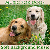 Play & Download Music for Dogs: Soft Background Music by The O'Neill Brothers Group | Napster