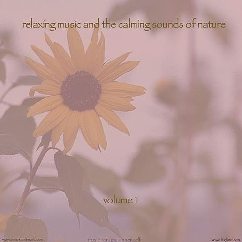 Play & Download Relaxing Music & The Calming Sounds Of Nature - Volume 1 by Music For Meditation | Napster