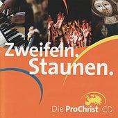 Zweifeln. Staunen. by Pro Christ