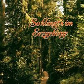 So klingt's im Erzgebirge by Various Artists