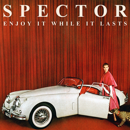 Play & Download Enjoy It While It Lasts by Spector | Napster