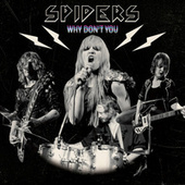 Why Don't You by Spiders