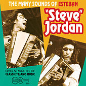 Play & Download The Many Sounds Of Steve Jordan by Steve Jordan | Napster