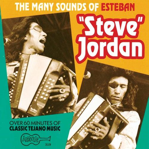 The Many Sounds Of Steve Jordan by Steve Jordan