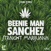 Straight Marijuana - Single by Various Artists