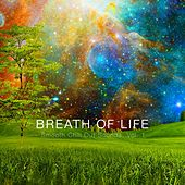 Breath of Life - Smooth Chill out Sounds, Vol. 1 by Various Artists