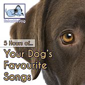 Play & Download Your Dog's Favourite Songs (5 Hours) by Relaxmydog | Napster