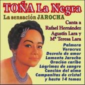 La Sensación Jarocha Canta a Lara y Hernández by Toña La Negra