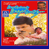Play & Download Kaalamellam Kadhal Vaazhga (Original Motion Picture Soundtrack) by Various Artists | Napster