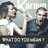 What Do You Mean? - Single von Karmin