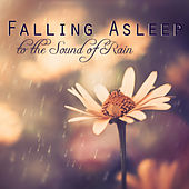 Falling Asleep to the Sound of Rain - 1 Hour Relaxing Sleep Music to Help you Sleep Well, Relax and Dream by Sleep Music Academy