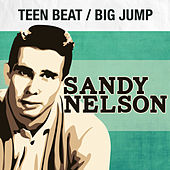 Teen Beat / Big Jump by Sandy Nelson