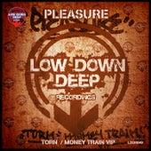 Torn / Money Train VIP by Pleasure