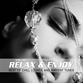 Relax & Enjoy, Vol. 1 (Best of Chill Lounge and Ambient Tunes) by Various Artists