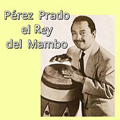 Play & Download Pérez Prado el Rey del Mambo by Perez Prado | Napster