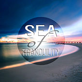 Play & Download Sea of Tranquility - Healing Sleep Songs, Soothing and Relaxing Ocean Waves Sounds, Calming Quiet Nature Sounds, White Noise, Insomnia Cure by Calm Sea Ambient | Napster