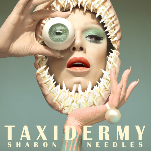 Taxidermy by Sharon Needles