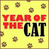 Year of the Cat by Piano Man