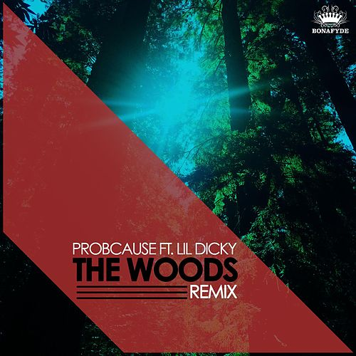 Play & Download The Woods (Remix) [feat. Lil Dicky] by Probcause | Napster