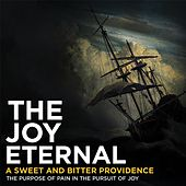 A Sweet and Bitter Providence by The Joy Eternal