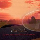 Liebe muss von Herzen kommen by Don Carlos