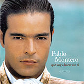 Play & Download Que Voy A Hacer Sin Ti by Pablo Montero | Napster