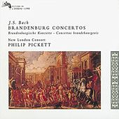 Play & Download Bach, J.S.: Brandenburg Concertos by Various Artists | Napster