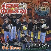 Play & Download Tú Eres by Sabor Sonidero | Napster