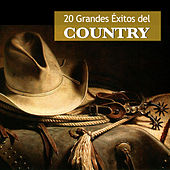 20 Grandes Éxitos del Country by Various Artists