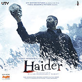 Play & Download Haider (Original Motion Picture Soundtrack) by Various Artists | Napster