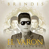Play & Download Brindis - Single by El Varon de la bachata | Napster
