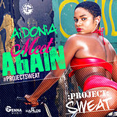 Meet Again - Single by Aidonia