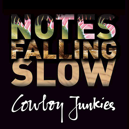 Play & Download Notes Falling Slow (Box Set) by Cowboy Junkies | Napster