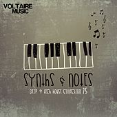 Synths and Notes 25 by Various Artists
