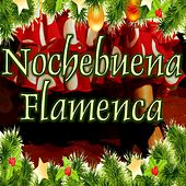 Play & Download Nochebuena Flamenca by Various Artists | Napster