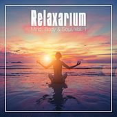 Relaxarium - Mind, Body & Soul, Vol. 1 by Various Artists