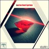 Luxurious Sound Experience, Vol. 1 von Various Artists
