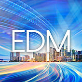 EDM / House / Techno / 2015 by Various Artists