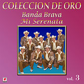 Play & Download Colección de Oro, Vol. 3: Mi Serenata by Banda Brava | Napster
