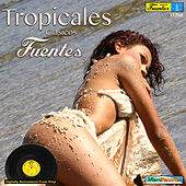 Tropicales Clasicos Fuentes 5 by Various Artists