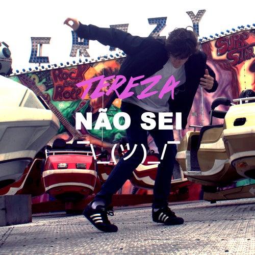 Não Sei - Single by Tereza