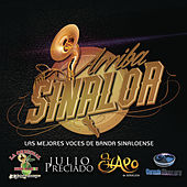 Play & Download Arriba Sinaloa - Las Mejores Voces de Banda Sinaloense by Various Artists | Napster