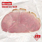 Selected Cuts, Vol. 2B by Various Artists